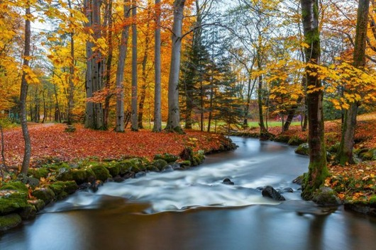autumn_is_such_a_beautiful_season_640_14