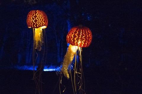 rise_of_the_jack_o_lanterns_15