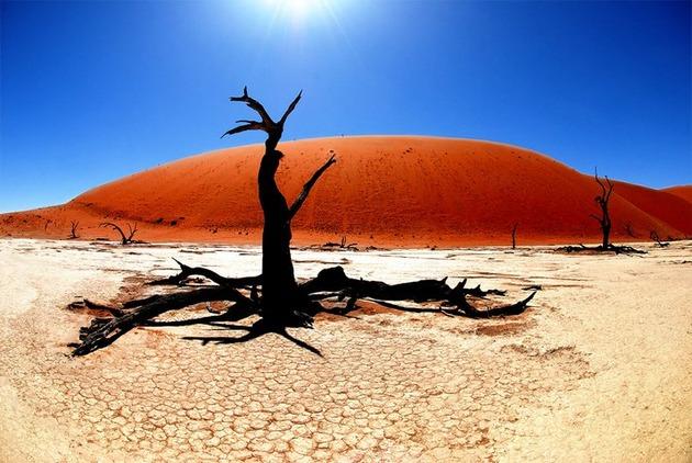Deadvlei-Namibia-1