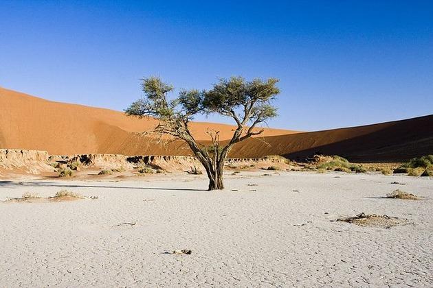 Deadvlei-Namibia-7
