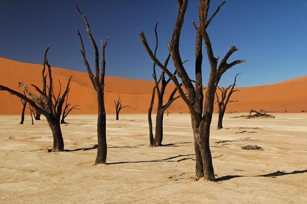 Deadvlei-Namibia-