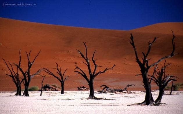 Deadvlei-Namibia-2