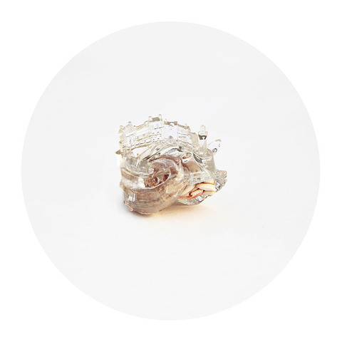 3d-printed-hermit-crab-architectural-shells-aki-inomata-4
