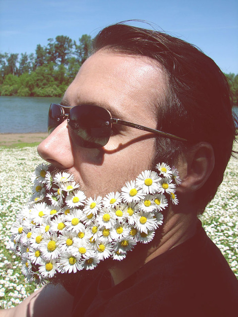 flower-beards-trend