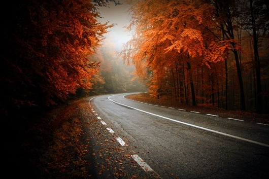 autumn_is_such_a_beautiful_season_640_05