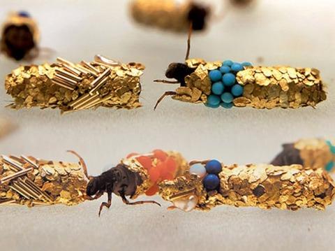 caddisfly-jewelry-3-537x402
