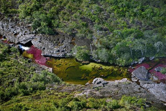 cano-cristales-liquid-rainbow-olivier-grunewald-02__880