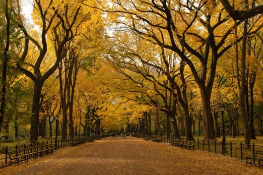 autumn_is_such_a_beautiful_season_640_13