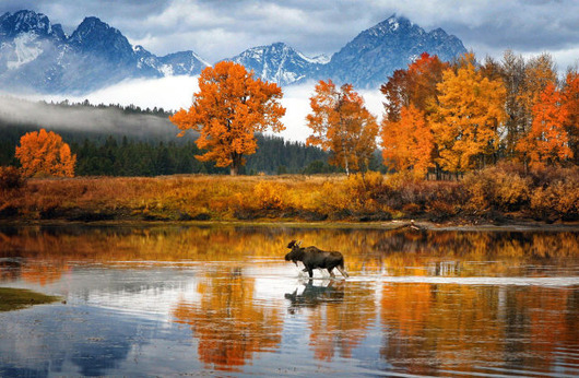 autumn_is_such_a_beautiful_season_640_08