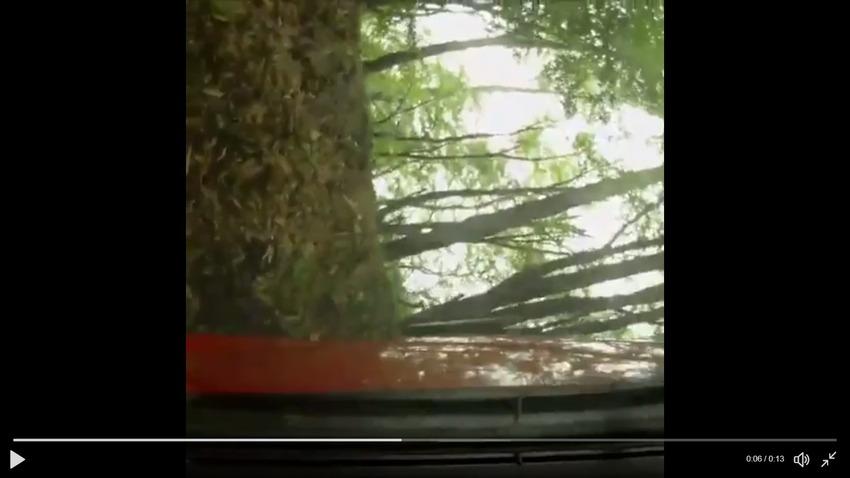 【動画】赤城山で残念ながら横転してしまったトヨタ86www