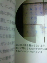 cfd45bae.jpg