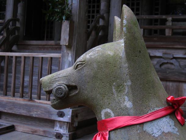 丹波の遺産を守る 「五社稲荷の狛狐」