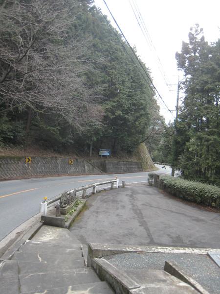 県道290号線