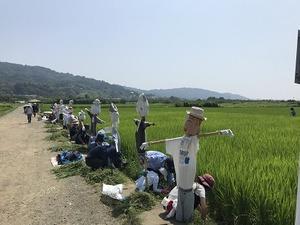 草刈IMG_4768
