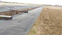 黒米たんぼ畦シート_20210212_100916