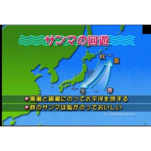 gameswf-1507055454-319-490x490