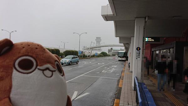 【艦これ】ボクカワウソ、今長崎空港にいるの・・・ 佐世保旅行を楽しむ提督まとめ