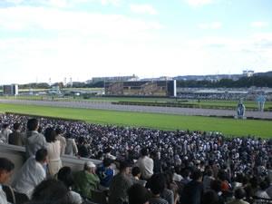 東京競馬場09101
