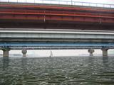 江戸川放水路2