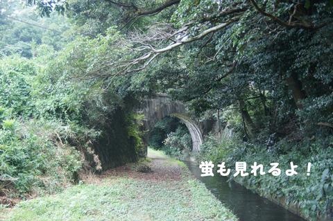 駅間三歩@楚原-麻生田16