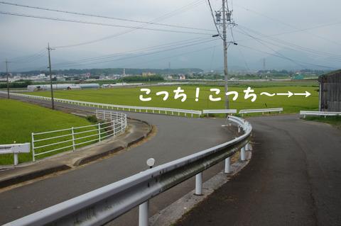 駅間三歩@楚原-麻生田14
