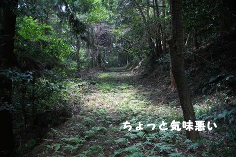 駅間三歩@楚原-麻生田41