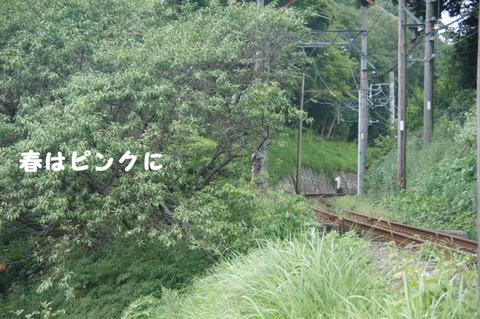 駅間三歩@楚原-麻生田33