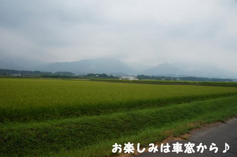 駅間三歩@楚原-麻生田25