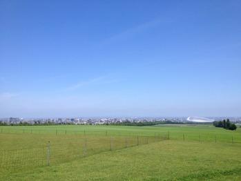 北海道(ダディ) 246