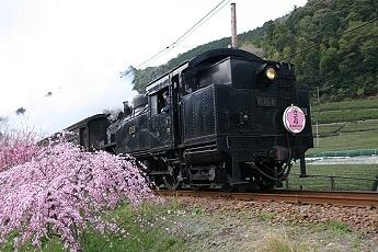 68d2010e.jpg