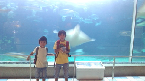 2011,8,3須磨水族園①