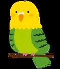 bird_inko