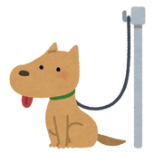 pet_dog_lead_hook