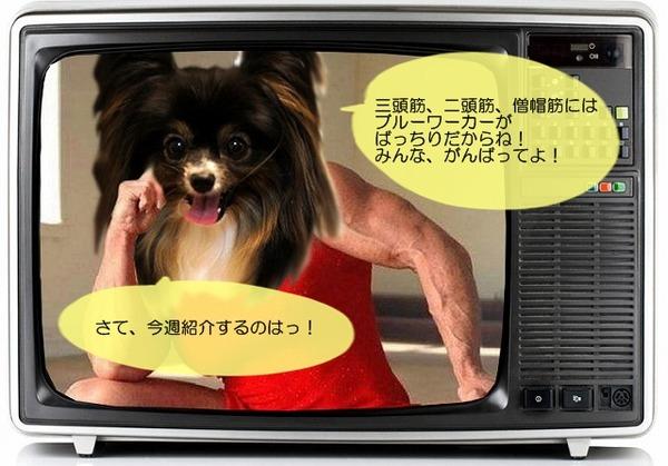 03tv-waku7