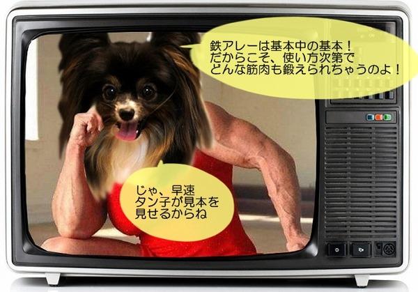 06tv-waku7