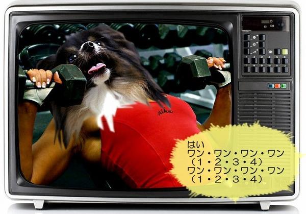 07tv-waku8
