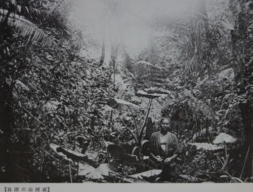 DSC07981 源河山の深谷
