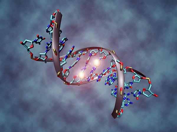 640px-DNA_methylation