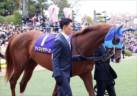 19satsuki_padokku_adomaiyama-zu01
