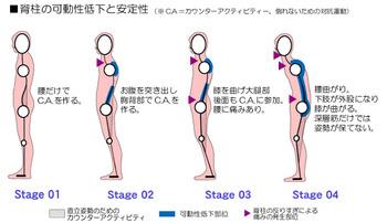 image_posture001