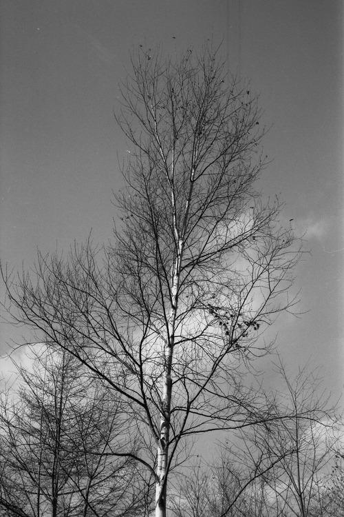 20071108_08