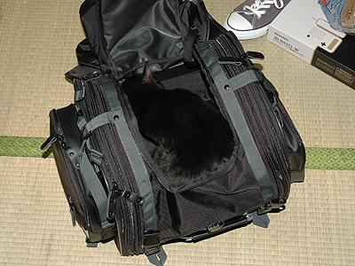field_seatbag_01.jpg