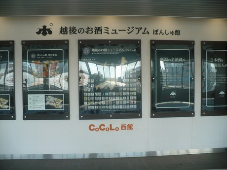 ぱんしゅ館 (1)