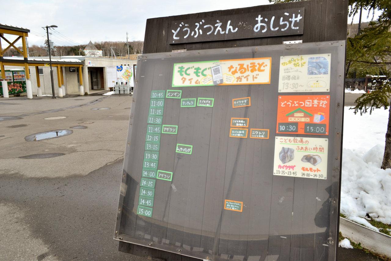 旭山動物園-27