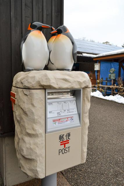 旭山動物園-78