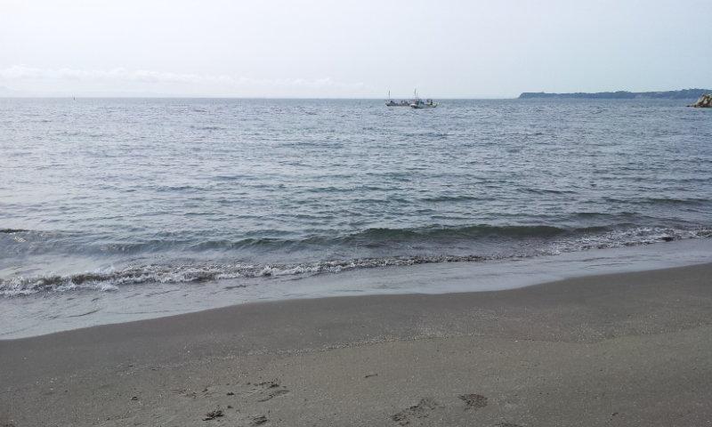 三浦 海岸 釣り