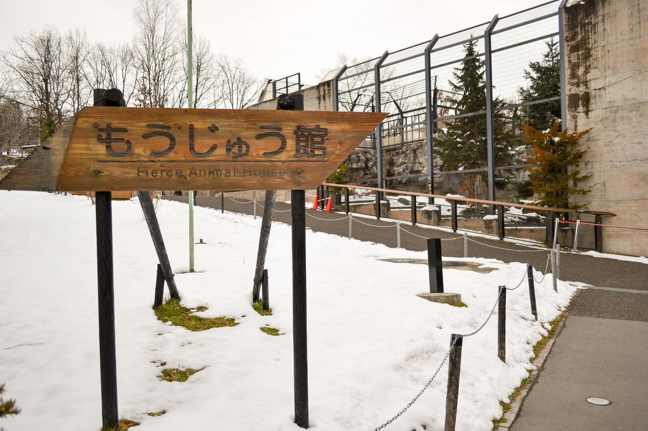 旭山動物園-59