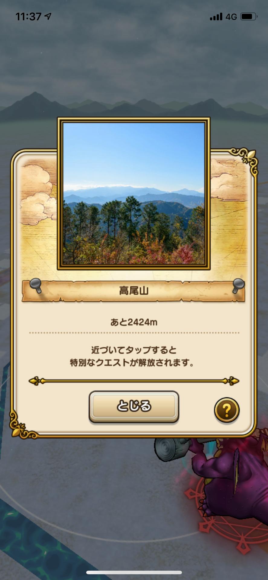 IMG_9584