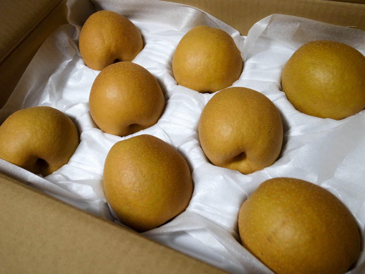 ふるさと納税で米子市からきた梨「王秋」が最高だった