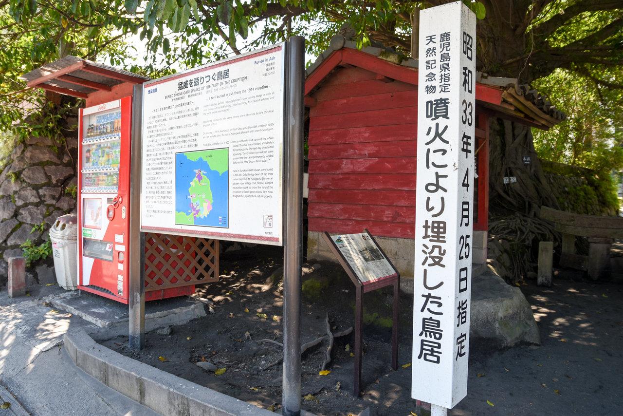 kagoshima-63